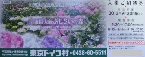 東京ドイツ村 招待券