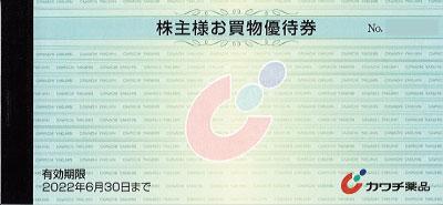 カワチ薬品 株主優待券 (100円×50枚綴)