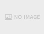 ソラシドエア(スカイネットアジア)株主優待券 (2020年8月31日迄)