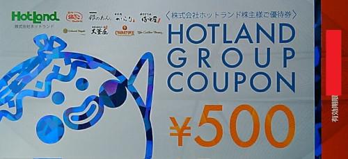 ホットランド 株主優待券 500円