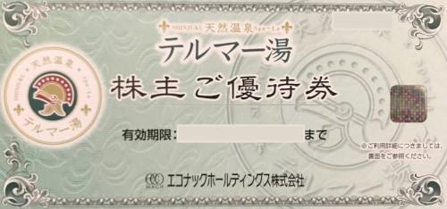 エコナックホールディングス 株主優待券 (テルマー湯 優待券)
